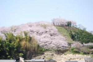 Tounomine Senbonzakura