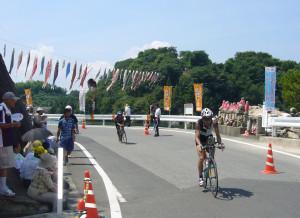 Triathlon in Sagishima